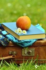Koffer, Blume, Buch, Apfel, Obst, Gänseblümchen, Schal