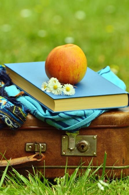 kofer, cvijeća, knjiga, jabuka, voće, tratinčica, šal
