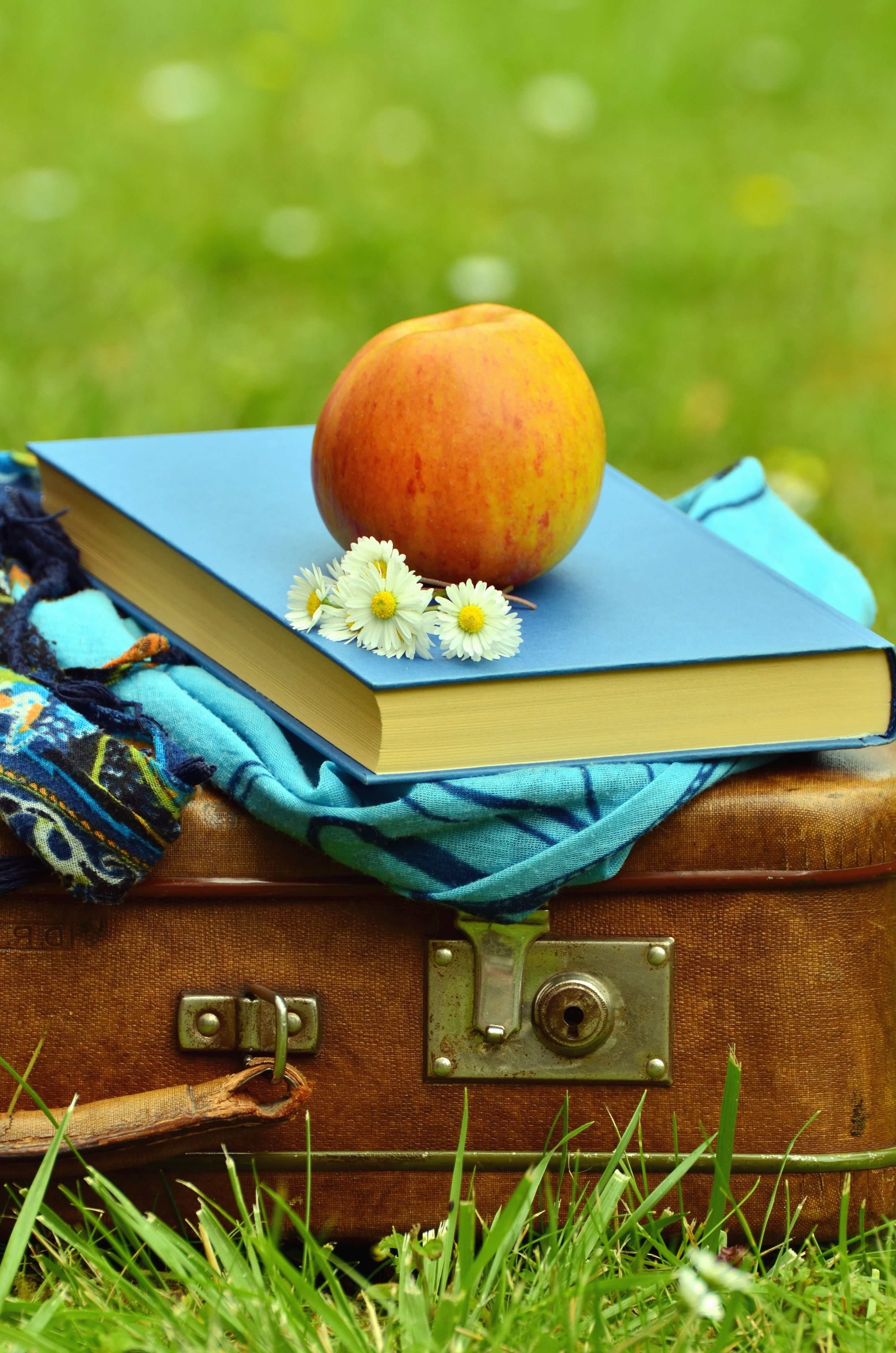 Free Picture Suitcase Flower Book Apple Fruit Daisy