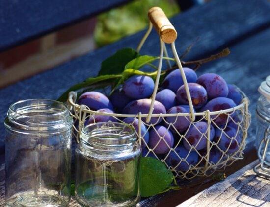 plum, fruit, basket, metal, jar, leaf