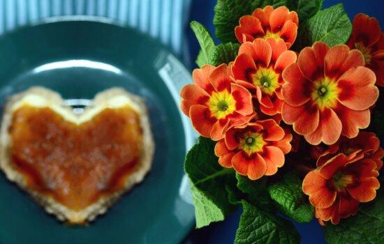 Flor, hoja, planta, placa, comida, corazón, decoración