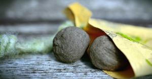나무, 씨앗 봉투, 종이, 표면