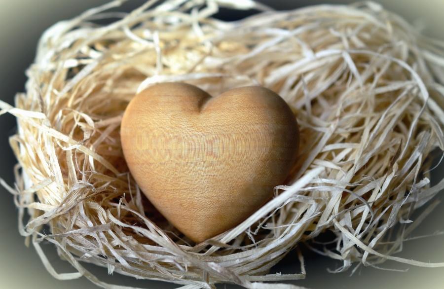 srdce, drevo, umenie, hniezdo, dekorácie