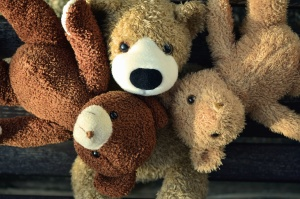 teddy bear, toys