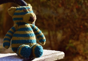 teddy bear, wool, toy, table