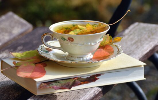 Libro, té, cerámica, hoja, decoración, banco