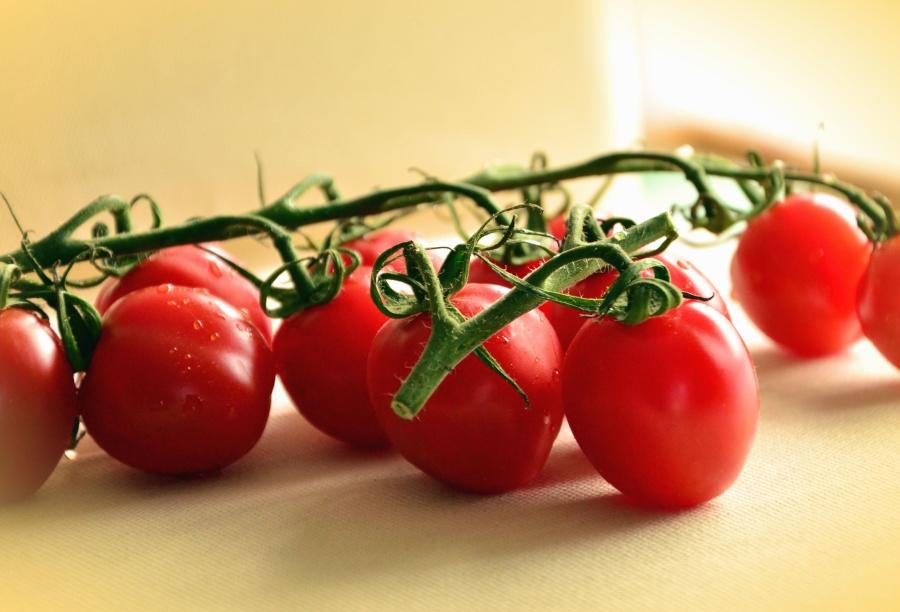 Tomate, tallo, vegetal, comida, planta