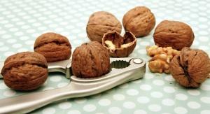 nutcracker, walnut, core, food