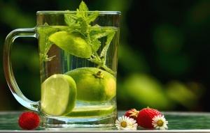 води лимона листя, м'ята, полуниця, ромашки, квітка