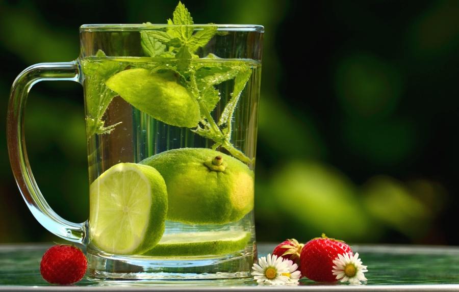 water, lemon, leaf, mint, strawberry, daisy, flower