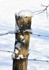 pole, snow, wire, fence, winter, cold