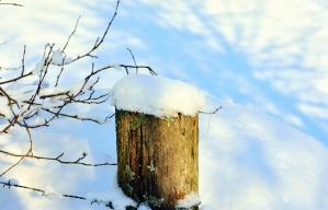 fence, snow, winter, cold