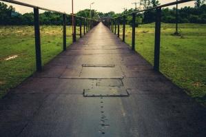 çit, yol, park
