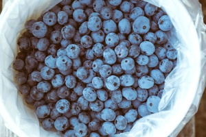 fresh, blueberry, fruit, basket