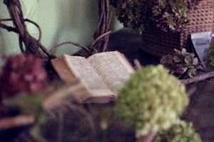 Vieux, livre, nature morte, fleur