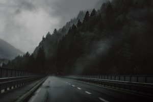 dark, forest, road, way, highway
