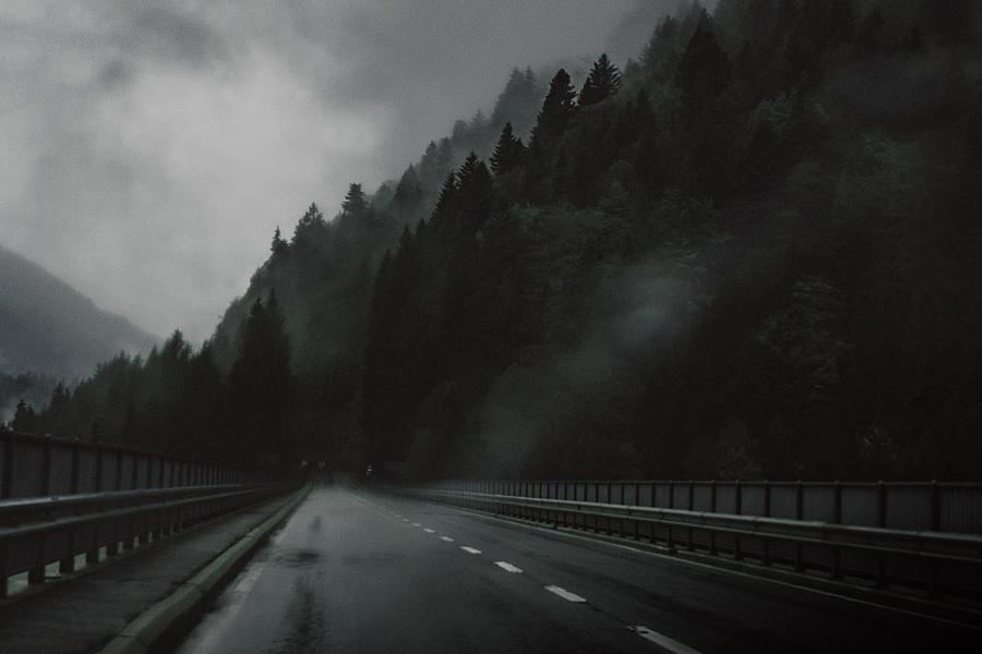 dark, forest, road, way, highway