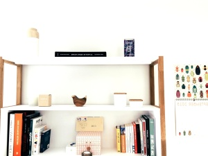 shelf, book, stuff, furniture, room, interior