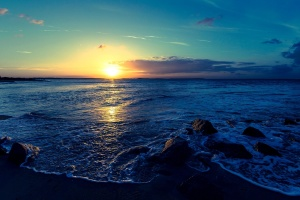sunset, ocean, sea, beach, water, coast, sky, sun, landscape