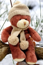 teddy bear, outside, winter, snow