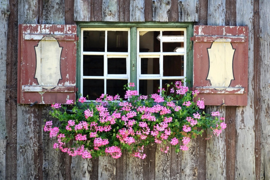 window, architecture, wall, house