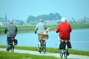 bicycle, dog, basket, people, recreation, coast, road, river