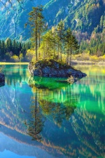 wood, rocks, mountain, forest, nature, lake, reflection