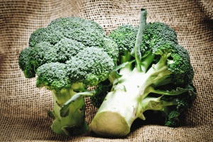 broccoli, vegetable, plant, food, organic