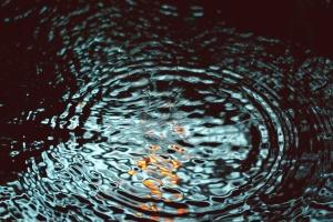Acqua, onda, pioggia, riflessione, luce