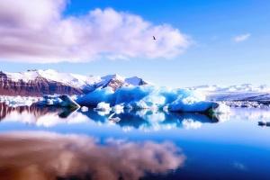 lake, ice, mountain, water, reflection, cloud, bird