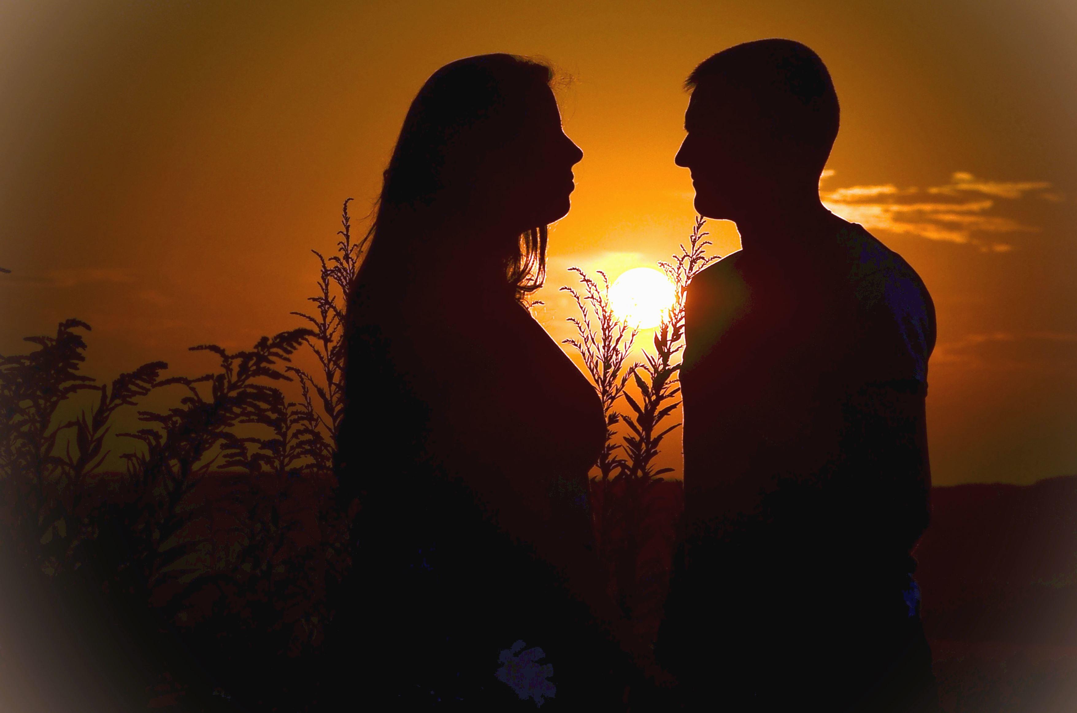 Silueta Hombre Y Mujer: Imagen Gratis: Hombre, Mujer, Silueta, Planta, Puesta Del