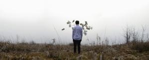 man, grass, plant, paper, cloudy