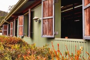 kabina, prozora, ventilacija, drvo, biljka, Lampa