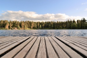 plank, lake, water, forest, tree, sky, nature