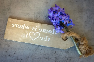 flower, board, inscription, petals, plant. rope