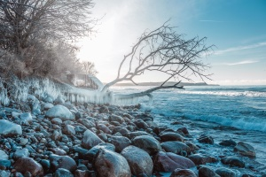 ice, winter, cold, rocks, branch, water, landscape, light, sun, weather