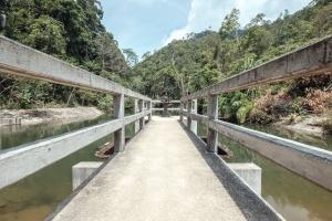 Cielo, puente, valla, paisaje, viajes, bosque, verano, nube