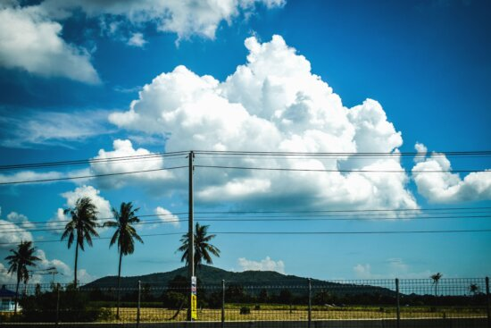 sky, cloud, palm, tree, wire, electricity, fence, mountain