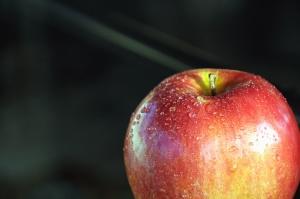 Apple, frukt, organisk, vann, dugg, våt