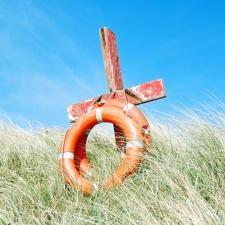 lifebuoy, wood, sea grass, rope, sky