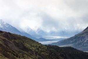 sníh, mlha, Les, mountain, strom, zima, zima