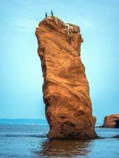 Oiseau, roches, animal, mer, eau, pierre, montagne, île