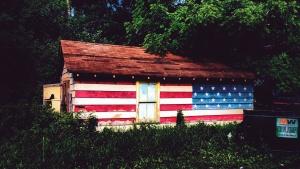 dom, okno, strechy, fasády, vlajky, lesa, stromu, rastlín