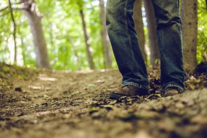 pants, shoes, forest, man, wood, leaf, road