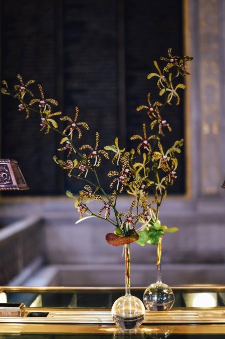 Plante, verre, récipient, jardin botanique, eau, laboratoire, feuille, table