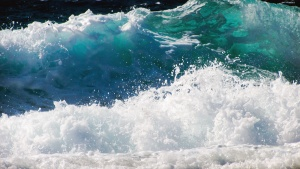 wave, sea, foam, water