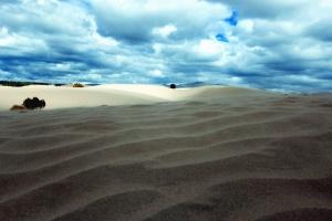 zand, lijn, wolk, boom, landschap