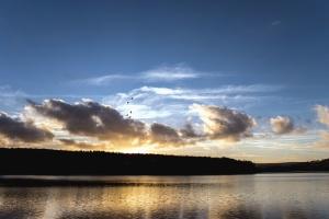 озеро, води, захід сонця, ліс, природи, краєвид