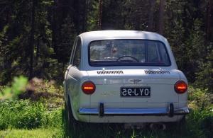 retro, automobile, metal, registration, stop light, forest, nature