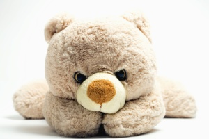 teddy bear, toy, child, doll